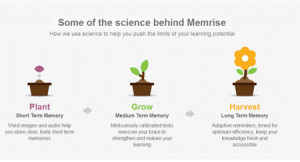 Science behind Memrise Memorizing Technique
